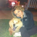 Perro Chow Chow Toty