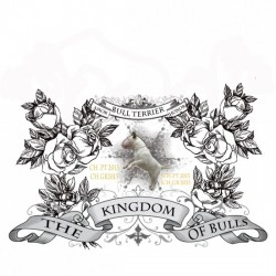 the kingdom of bulls