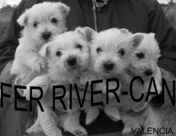 Fer River-can