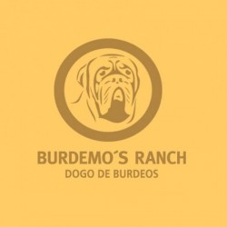 Burdemo's Ranch