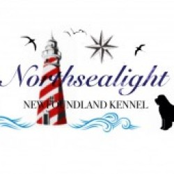 Northsealight Terranovas