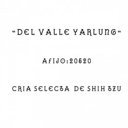 Del Valle Yarlung