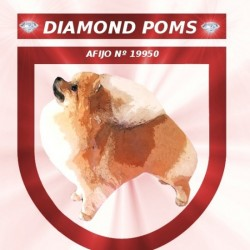 Diamond Poms