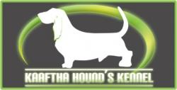 Kaaftha Hound's Kennel