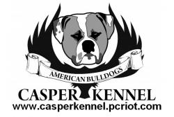 Casper Kennel