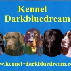 Kennel Darkbluedream