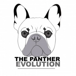 The Panther Evolution