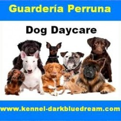 Guardería y Hotel Perruno - Dog day care Darkblue