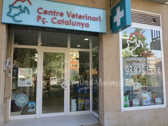 Veterinario Centre Veterinari Placa Catalunya Veterinarios