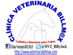 Clinica Veterinaria BILLM@X | Veterinarios en Distrito Federal